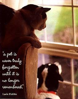 Saying Goodbye To A Beloved Pet - Goldenacresdogs.com